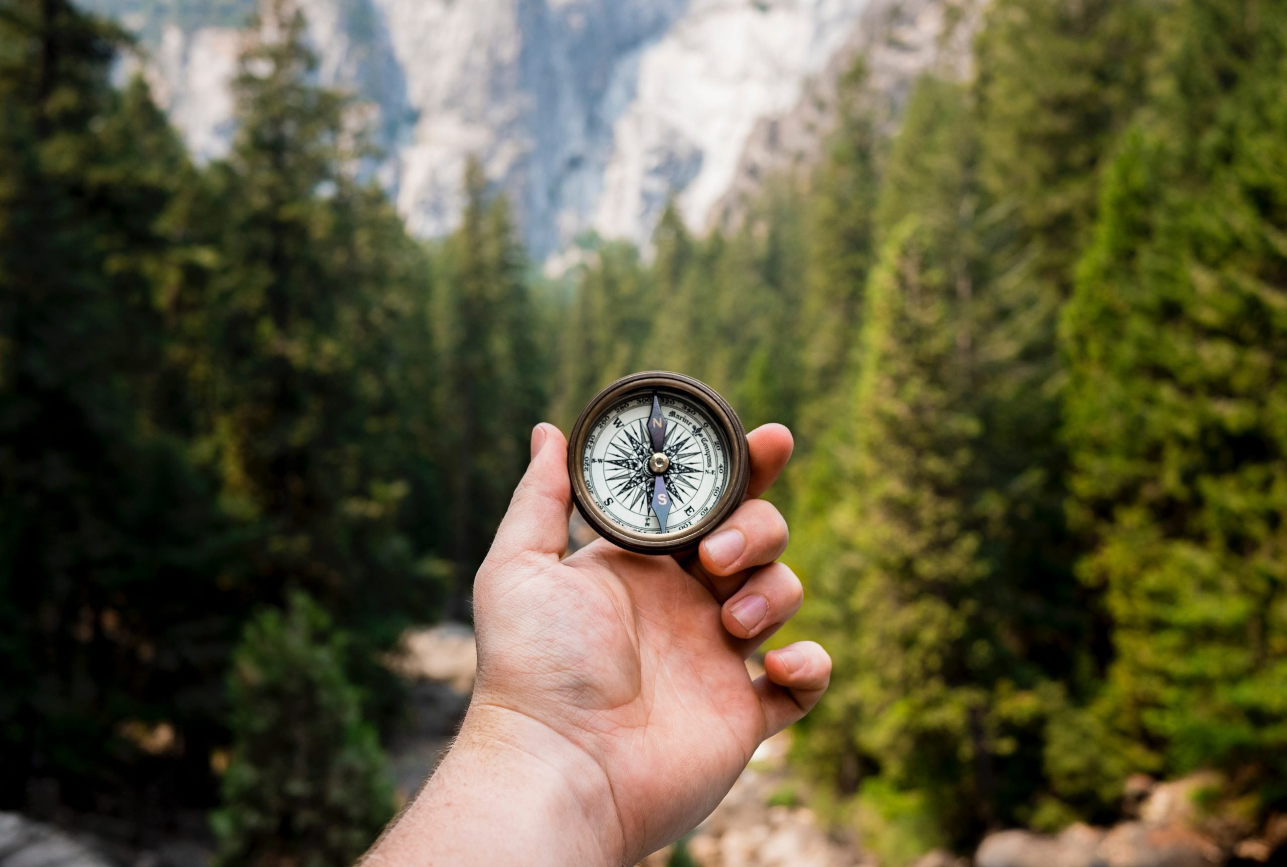 hand holding up compass towards trees and sky